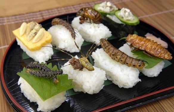 comer-insetos